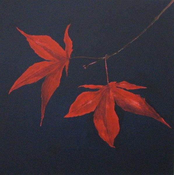 Jahreszeiten, Makro, Blätter, Ambiente, Natur, Wald
