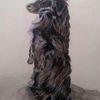 Hund, Schwarz, Tuschmalerei, Zeichnungen
