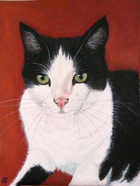 Schwarz weiß, Katze, Malerei, Tiere,