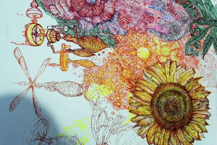 Fliegende, Vespennester, Zeichnungen