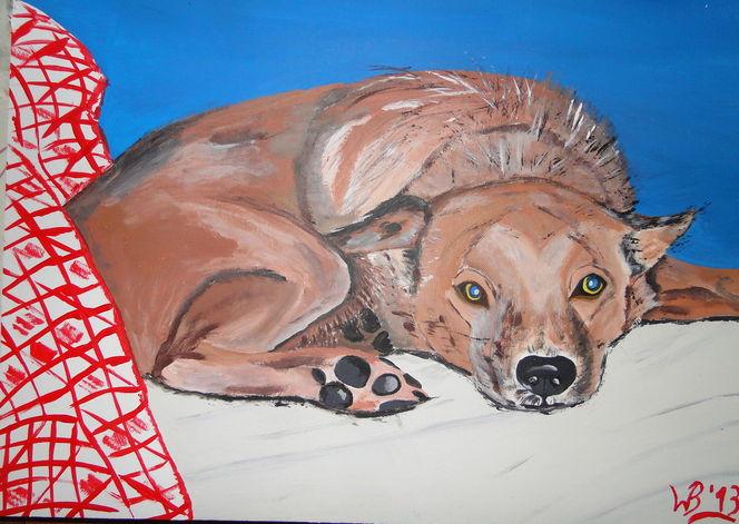 Hund, Tierschutz, Fuchs, Ukraine, Terra, Mater