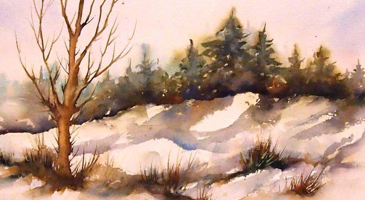 Schmelzen, Wiese, Landschaft, Winter, Baum, Schnee