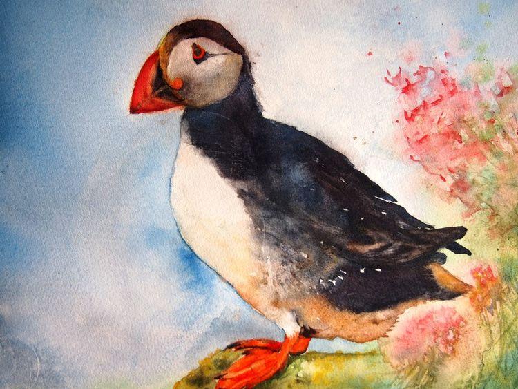 Aquarellmalerei, Tiere, Papageitaucher, Vogel, Aquarell