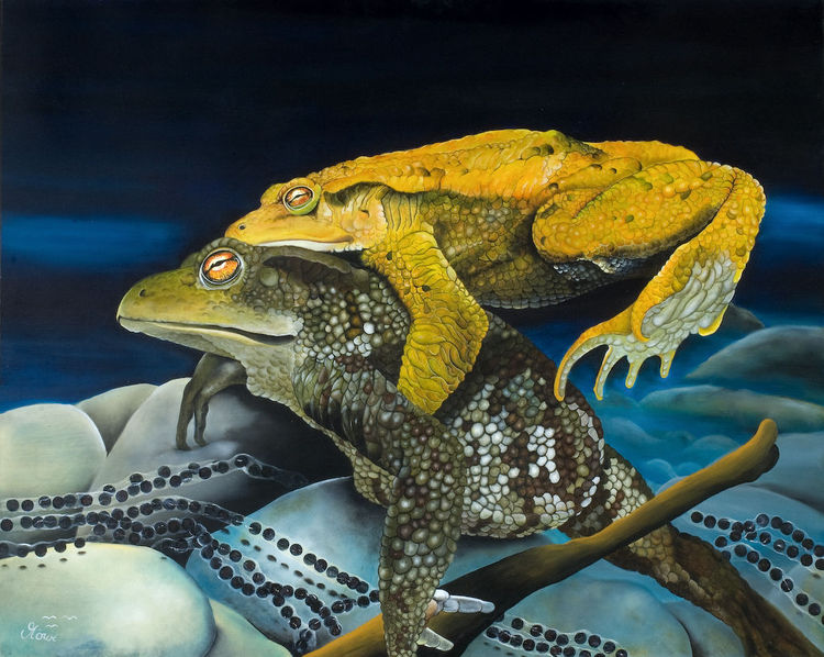 Frosch, Amphibien, Erdkröte, Tiere, Wasser, Malerei