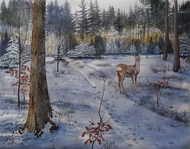 Odenwald, Reh, Licht, Mudau, Winter, Baum