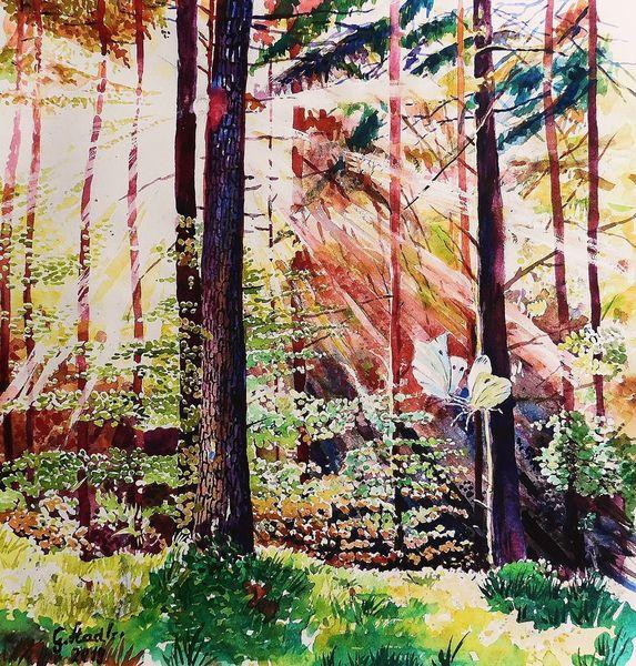 Herbst, Wald, Herbstlaub, Baum, Tanz, Schmetterling