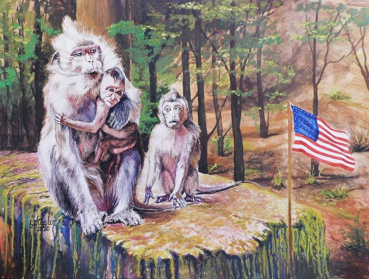 Flagge, Ignoranz, Familie, Wald, Kritik, Stein