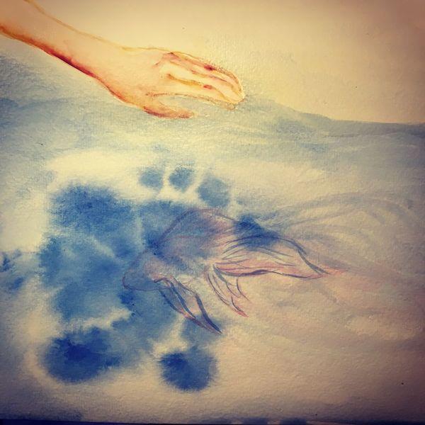 Wasser, Frau, Hand, Wind, Fisch, Luft