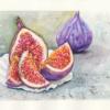 Früchte, Essen, Feige, Aquarell