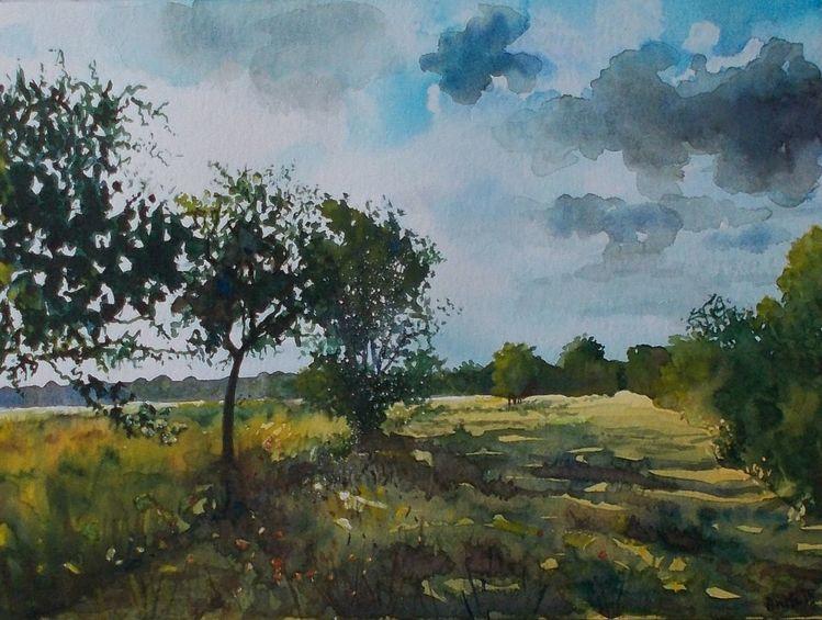 Feld, Wolken, Abend, Baum, Weite, Wiese