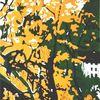 Grafik, Lino gravure, Farben, Druckgrafik