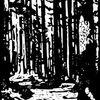 Linol, Druckgrafik, Schwarz weiß, Linolschnitt