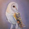 Tierzeichnung, Schleiereule, Tiermalerei, Pastellmalerei