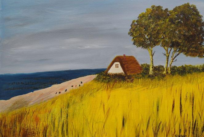 Ahrenshoop, Landschaft, Strand, Meer, Natur, Dünen