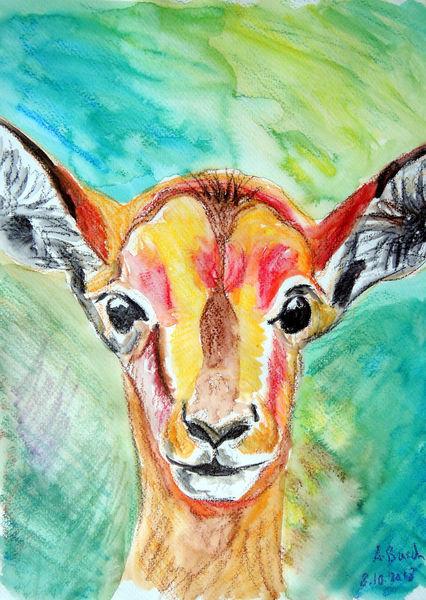 Wachskreiden, Antilope, Gazelle, Tierportrait, Tierkopf, Zeichnungen