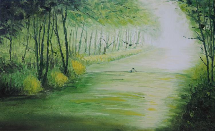 Wasser, Ente, Bach, Licht, Bachufer, Fluss