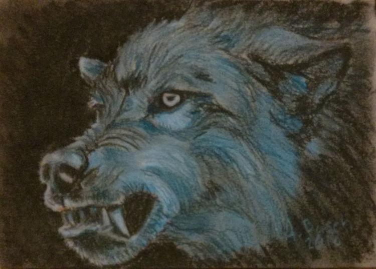 Wolf, Knurren, Zeichnungen,