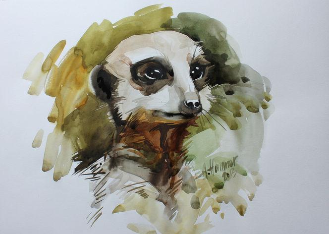 Tiere, Aquarellmalerei, Tierportrait, Erdmännchen, Aquarell, Held