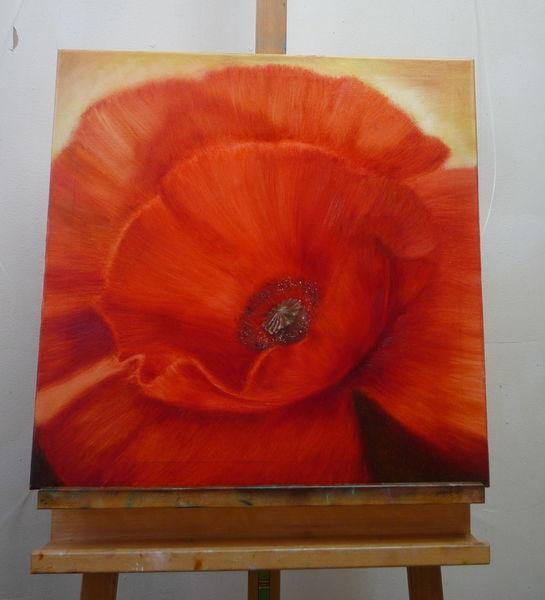 Mohn, Ölmalerei, Rot, Blüte, Mohnblüten, Malerei