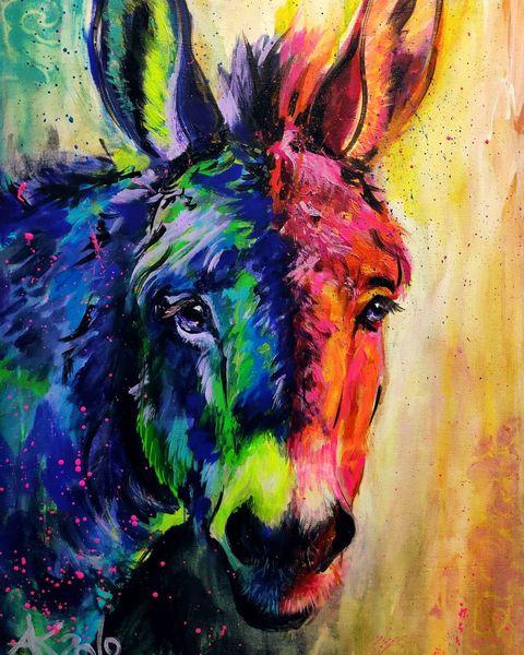 Esel, Buntes tier, Vieh, Donkey, Regenbogen, Tierportrait