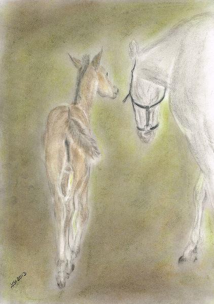 Porträtmalerei, Fohlen, Pferdezeichnung, Schutz, In bewegung, Pastellmalerei