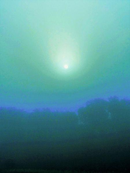 Nebel, Farben, Licht, Morgen, Fotografie, Landschaft