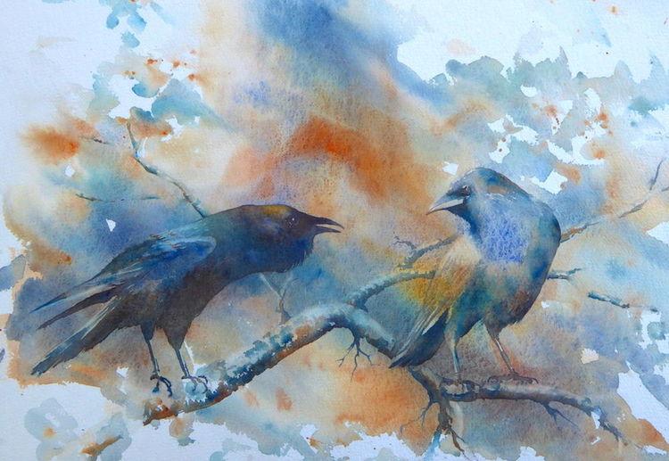 Position standpunkt, Aquarellmalerei, Vogel, Gespräch, Kolkrabe, Ansichtssache