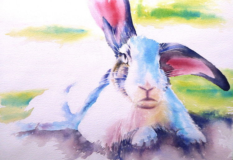 Hase, Ostern, Tiere, Haustier, Osterhase, Aquarellmalerei