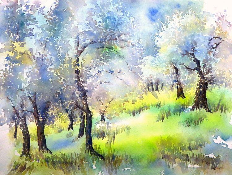 Olive grove, Frühling, Aquarellmalerei, Italien, Olivenbaum, Aquarell