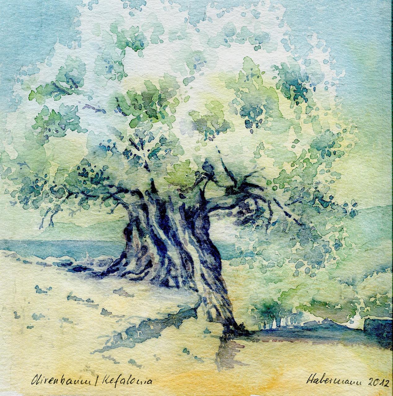 bild kefalonia griechenland olivenbaum aquarellmalerei. Black Bedroom Furniture Sets. Home Design Ideas