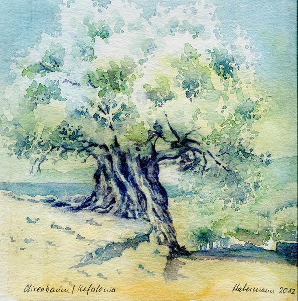 Griechenland, Aquarellmalerei, Kefalonia, Olivenbaum, Aquarell,
