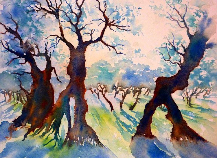 Italien, Aquarellmalerei, Olive grove, Assisi, Olivenbaum, Umbrien