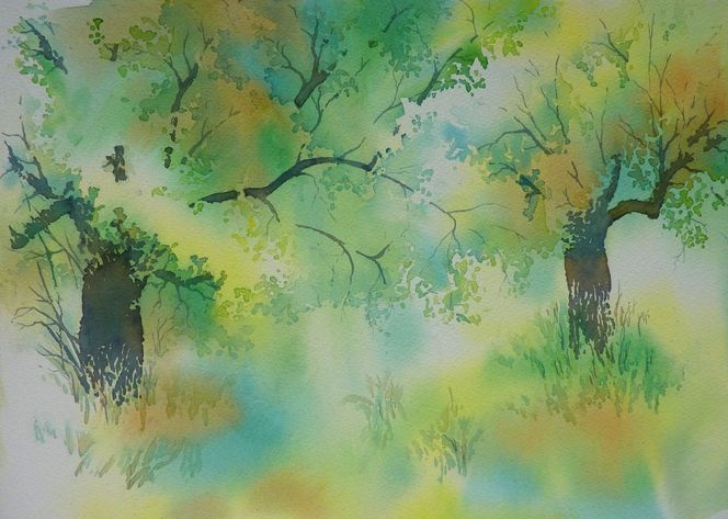 Hain, Aquarellmalerei, Griechenland, Olivenbaum, Aquarell, Pflanzen