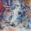 Tiere, Aquarellmalerei, Hund, Galgo