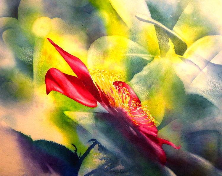 Frühling, Aquarellmalerei, Rose, Licht, Rot, Mai