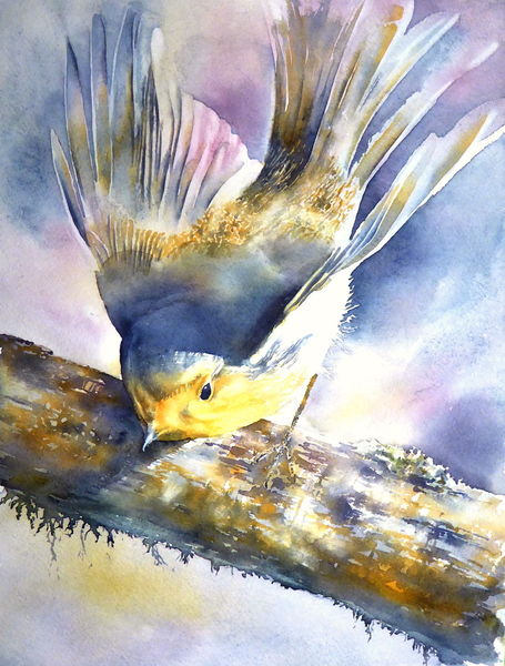 Robin, Vogel, Rouge, Singvogel, Gorge, Aquarellmalerei