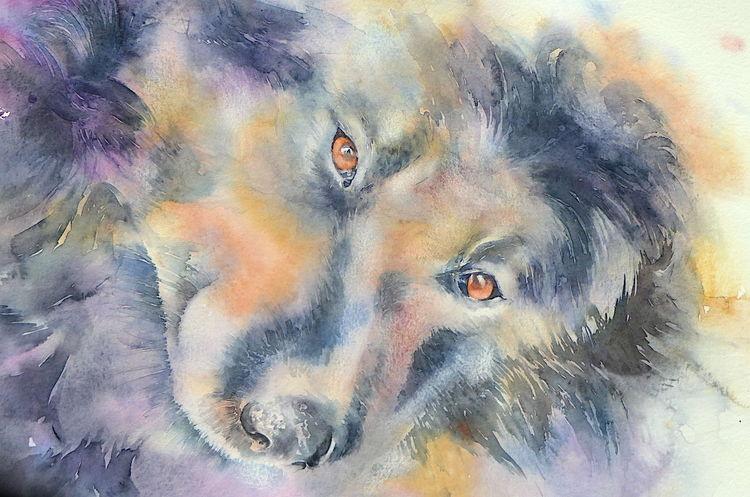 Hund, Aquarellmalerei, Souldog, Aquarell, Tiere