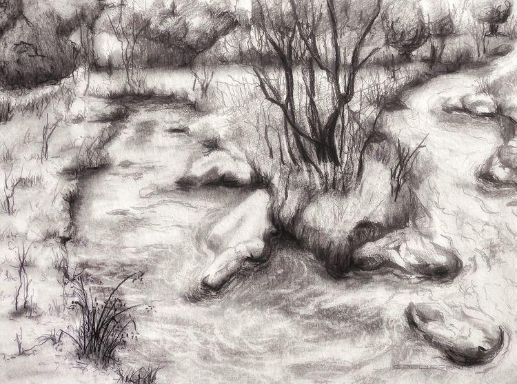 Lüttelforster mühle, Schwalm, Baum, Wald, Bach, Fluss