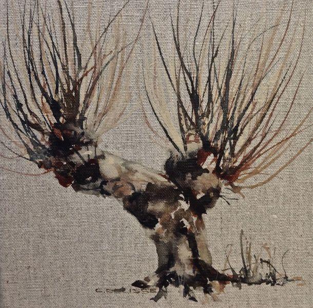 Kopfweide, Weide, Baum, Aquarell