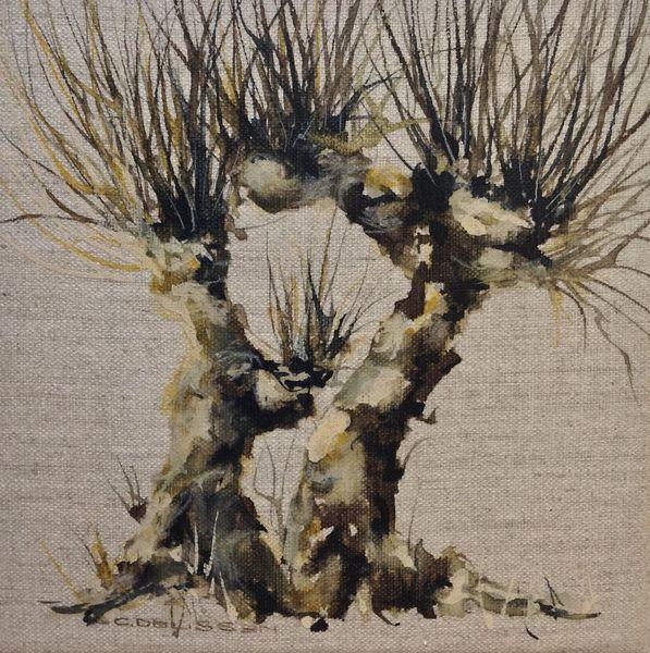 Weiden, Kopfweide, Baum, Aquarell