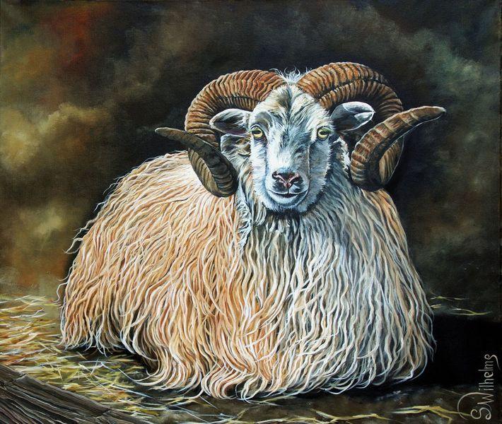 Fell, Schafwolle, Schaf, Bauernhof, Horn, Malerei