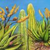 Kaktus, Gold, Blühende kakteen, Mediterran