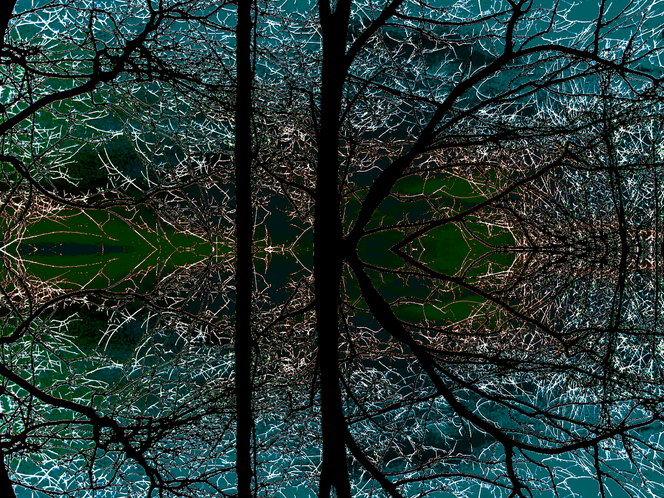 Digitale kunst, Wald