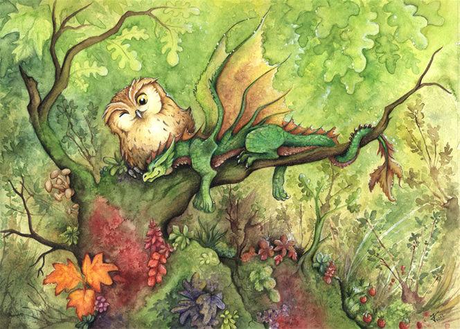 Wald, Walddrache kiriokami kinderbuch, Baum, Schlaf, Vögel vogel, Drache