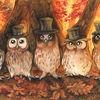 Vogel, Sänger, Owlet, Herbst