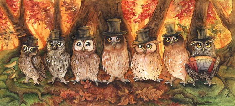 Owlet, Vogel, Sänger, Stern, Herbst, Kauz