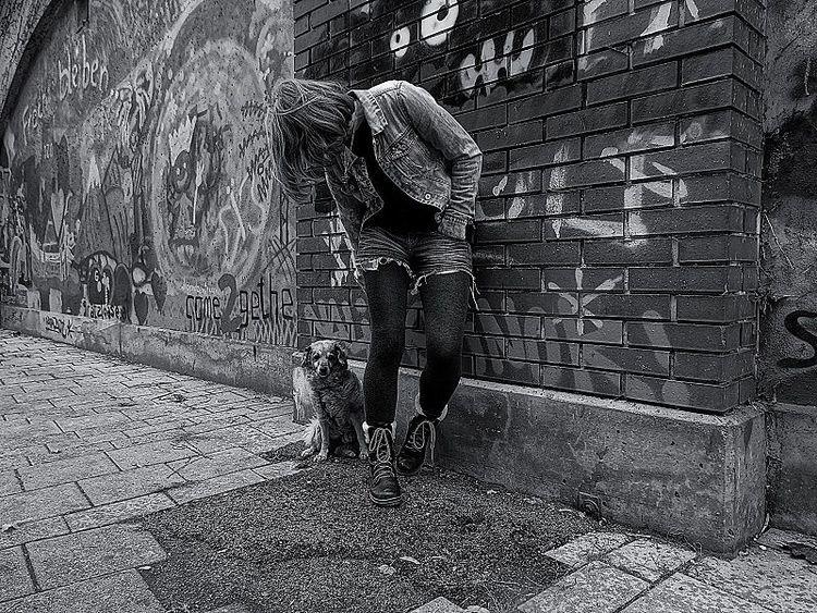 Menschen, Politik, Tiere, Fotografie, Realismus, Gesellschaft