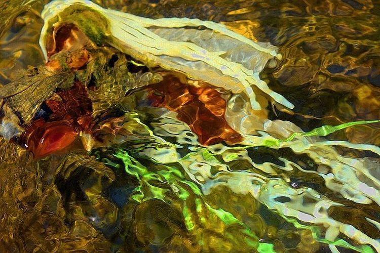 Digitale kunst, Hyperrealismus, Landschaft, Fotografie