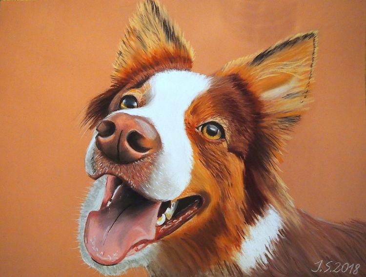 Hund, Hundeblick, Hundeschnauze, Malerei