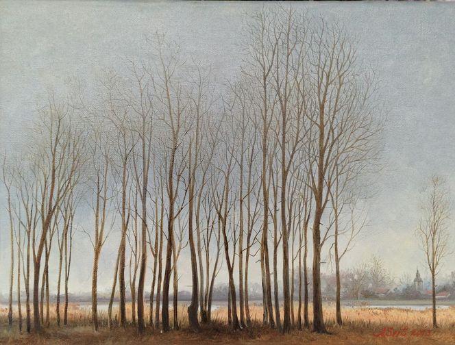 Winter, Landschaft, See, Wald, Baum, Herbst